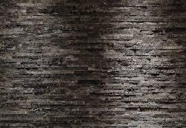 brewster 8 700 komar birkenrinde wall mural with paste 12 foot 1 brewster 8 700 komar birkenrinde wall mural with paste 12 foot 1 inch by 8 foot 4 inch photo wall mural amazon com