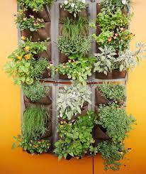 vertical gardens how to grow a vertical garden real simple