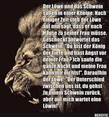 sprüche löwe der löwe und das schwein saßen in einer kneipe lustige bilder