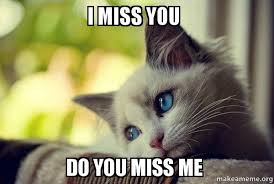 I Miss U Meme - i miss you do you miss me first world cat problems make a meme