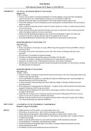 sle of resume business product manager resume sles velvet