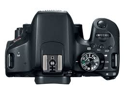 buyer u0027s guide canon eos rebel t7i 800d vs eos 77d vs eos 80d