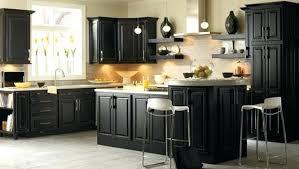 black kitchen cabinets u2013 subscribed me