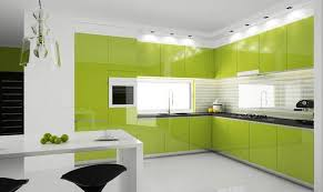 Kitchen Cabinets Green Kitchen Wonderful Color Decoration Ideas For Kitchen Magnificent