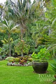 72 best tropical garden images on pinterest landscaping gardens