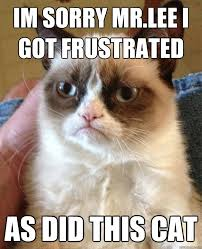Frustrated Meme - im sorry mr lee i got frustrated cat meme cat planet cat planet