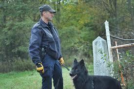 belgian shepherd quebec flickriver most interesting photos from noyan quebec canada