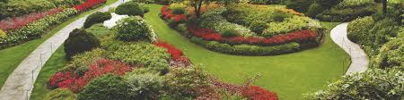 Commercial Landscaping Bids by Commercial Landscaping Horsham Pa Lawn Maintenance Horsham Pa