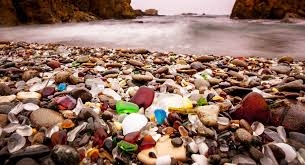 glass beach glass beach of fort bragg aquiziam