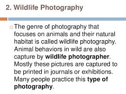Types Of Photography 5 Types Of Photography