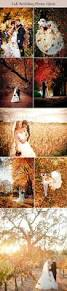 572 best fall weddings images on pinterest fall wedding colors