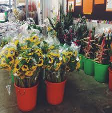 fresh flowers in bulk 5 tips for doing fresh flowers on the cheap in singapore