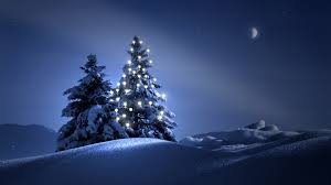 Christmas Tree by Blue Christmas Tree Wallpaper Collection 57