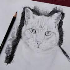 les 25 meilleures idées de la catégorie dessin de chat facile sur