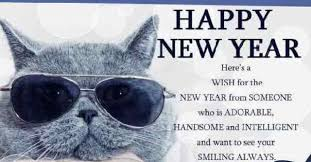1000 happy new year wishes 2017 greeting wishes images happy new
