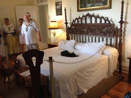 we were quite surprised to see a hemingway cat on papa u0027s bed