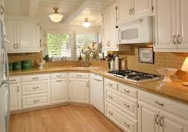 Flush Ceiling Lights For Kitchens Flush Ceiling Mount Kitchen Exhaust Fan Home Design Ideas
