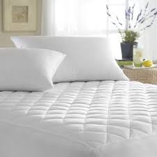 Mattress Cover Bed Bugs Mattress Covers U0026 Protectors Joss U0026 Main