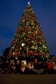 large christmas disneyland s tweaks twinkle with seasonal magic