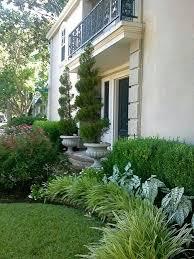 Garden Shrubs Ideas Front Yard Shrubs Ideas