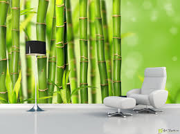 nature wallpaper wall murals bamboo fototapet art photowall nature wallpaper wall murals bamboo fototapet art photowall offers wall murals and photo wallpapers with the size you need buy online
