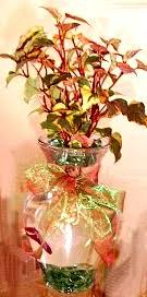 Beta Fish In Vase Fish U0026 Flowers Centerpiece U2013 Earth Day