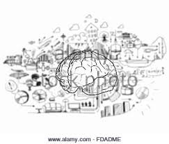 sketch of human brain and business ideas and strategy on white
