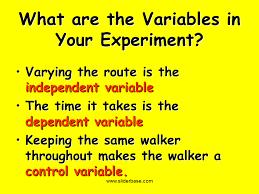 scientific method controls and variables presentation biology