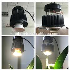 cfl grow light fixture grow light lowes androidtips co