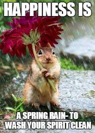 Flower Meme - chipmunk with a flower imgflip