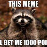 Meme Generator Raccoon - evil plotting raccoon meme generator imgflip