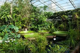 Botanical Gardens Oxford Bildergebnis Für Oxford Botanic Garden Oxford Schule Pinterest