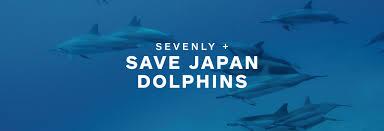 save japan dolphins u2013 kids u2013 sevenly