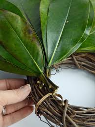 how to make a fresh magnolia wreath hgtv
