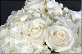White Roses Centerpieces by Brides Helping Brides Pics Of Hydrangea And Rose Centerpieces