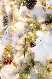 21 best fragrant christmas images on pinterest christmas trees