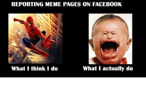 Meme Pages - reporting meme pages on facebook what i actually do what i think i