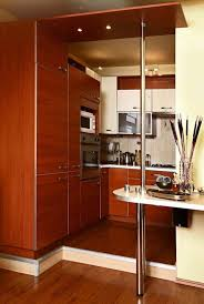 kitchen contemporary kitchen design ideas brown kitchen cabinets