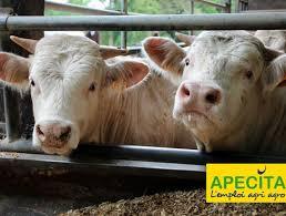 chambre d agriculture 76 offre d emploi salarié agricole 76 agri culture