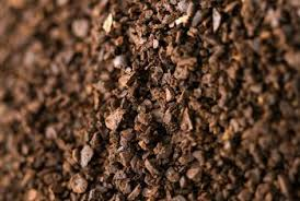 ground eggshells fertilizing plants with coffee grounds and eggshells home guides