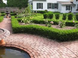 boxwood beauty the easy way