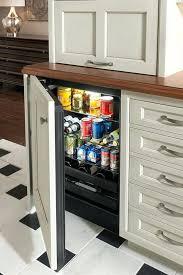 Woodmode Kitchen Cabinets Mini Fridge Storage Cabinet An Mini Fridge Surrounded By Stylish