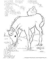 horse coloring pages printable foal eating grass coloring