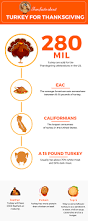 facts about thanksgiving turkey daily infographic about a variety of interesting topics