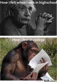 Meme Education - the education by wdman meme center