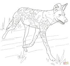 african wild dog or painted hunting dog coloring page free