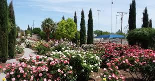 Botanical Gardens El Paso El Paso Municipal Garden El Paso County Master Gardeners