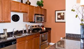 can mobile home kitchen cabinets be painted painting mobile home cabinets a new look for your cabinets