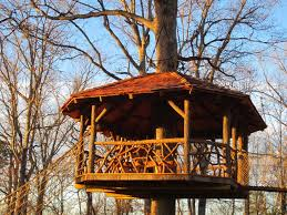 why planners are looking at treehouses for park development