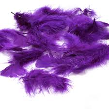 purple feather purple craft feathers hobbycraft